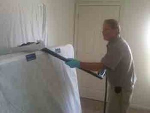 Bed Bug clean up is a tedious procedure